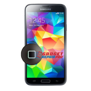 Consumer Reports Best Security Systems: Samsung Galaxy S5 Home Button